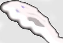 ghostleft
