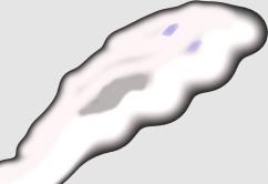 ghostright