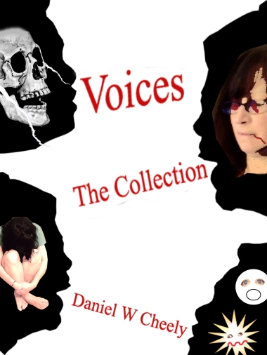 Voices Collection Cover