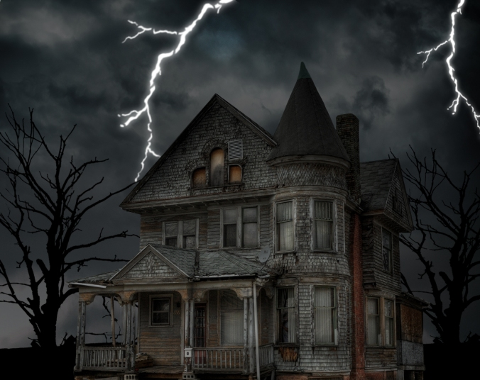 My Haunted House Room  Case