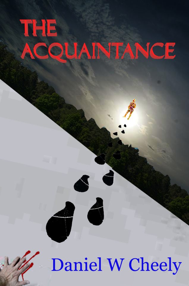 TheAcquaintanceBookCoverWithTitleAuthor
